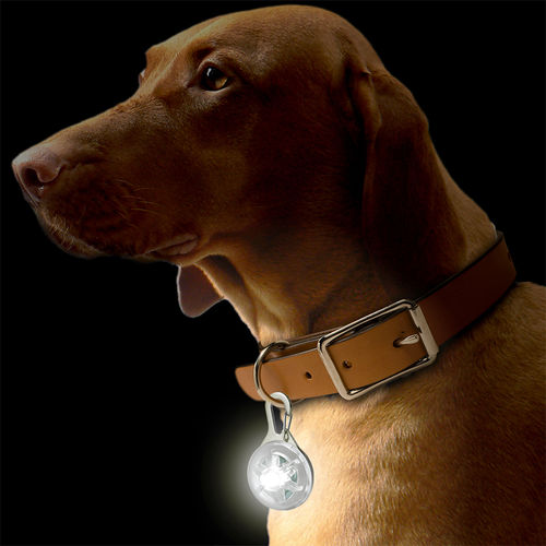 Clip-On LED Pet Collar / Camping / Keychain Safety Flash Light - White