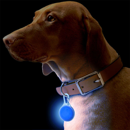 Clip-On Safety LED / Pet Dog Collar Flash Light / Keychain Hook - Blue